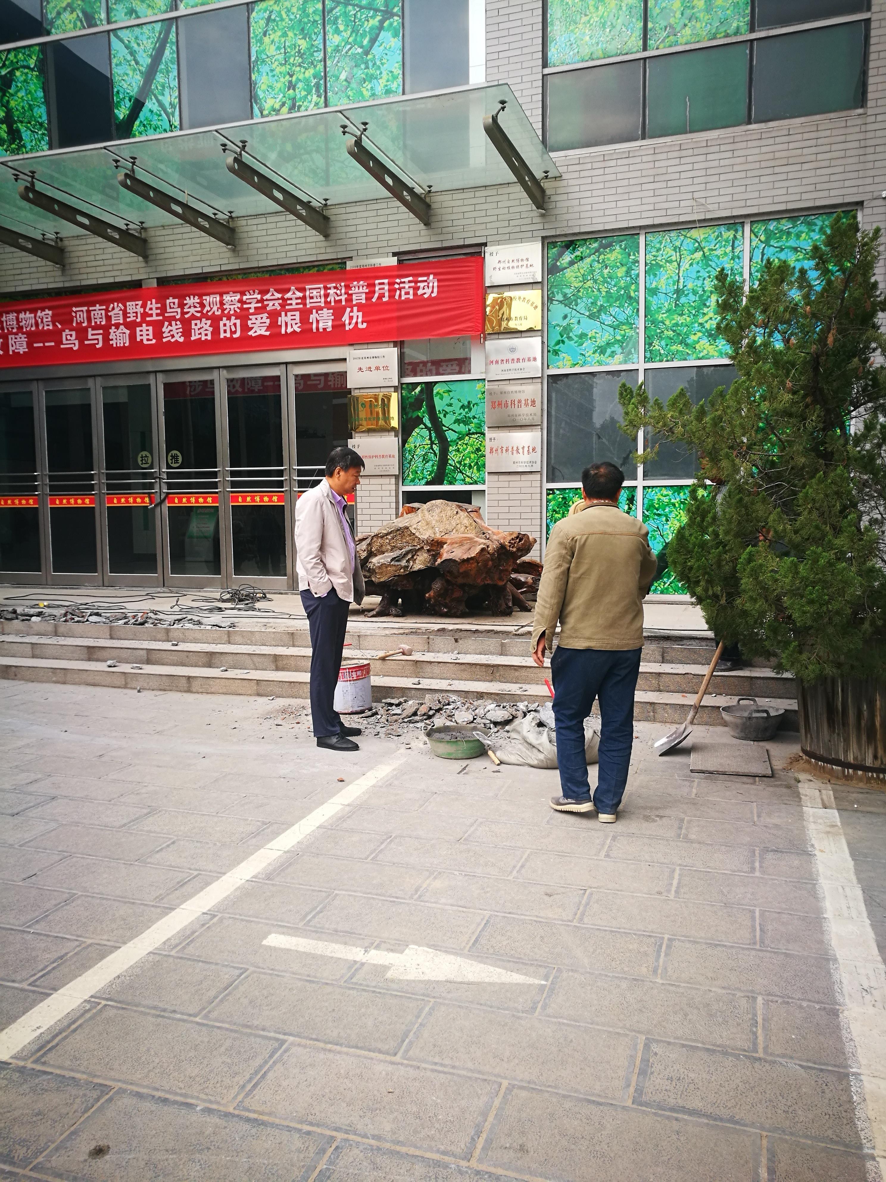 自然博物馆门口台阶维修
